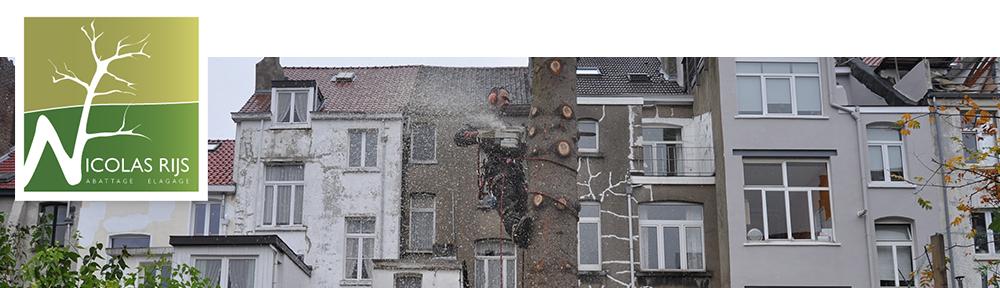 Nicolas Rijs | grimpeur élagueur certifié